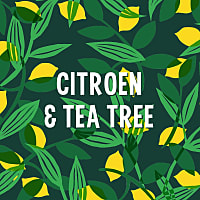 Citroen Tea Tree