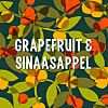 Grapefruit Sinaasappel