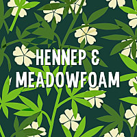 Hennep Meadowfoam